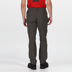Regatta Highton Pantalones Hombre, magnet